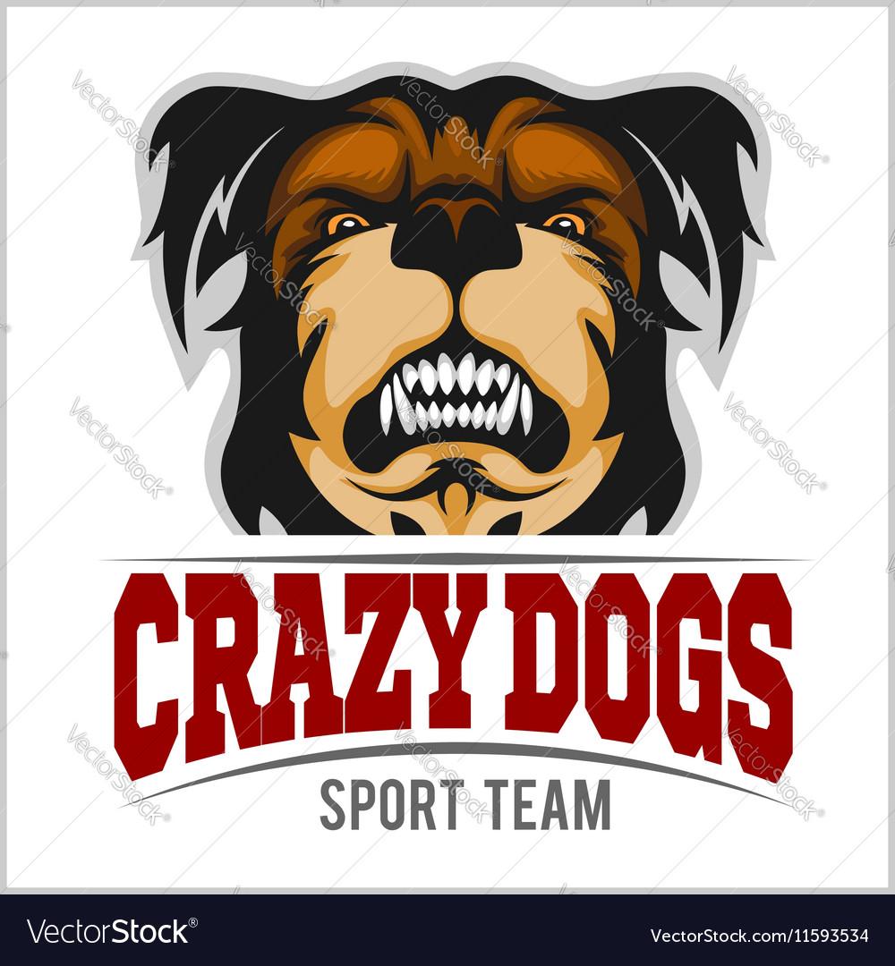 Modern professional logo for sport team Bulldog
