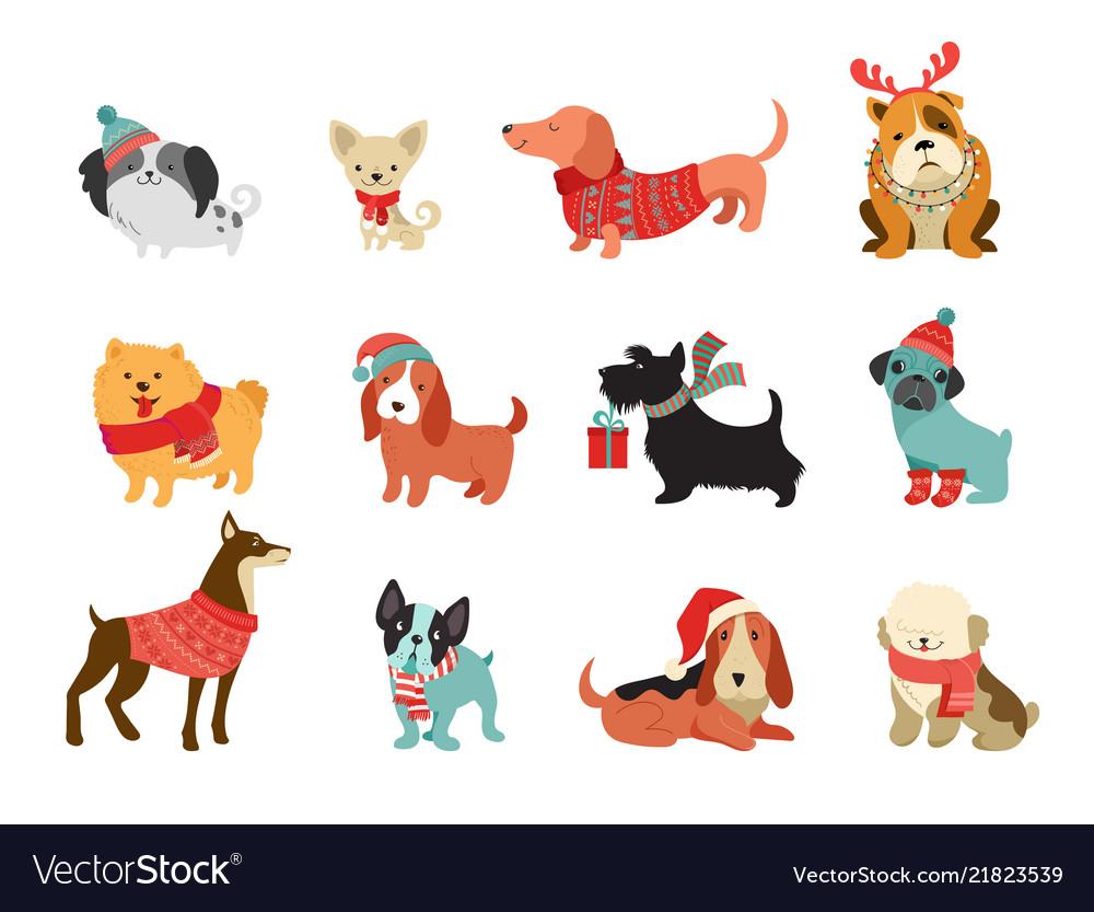 Collection christmas dogs merry christmas