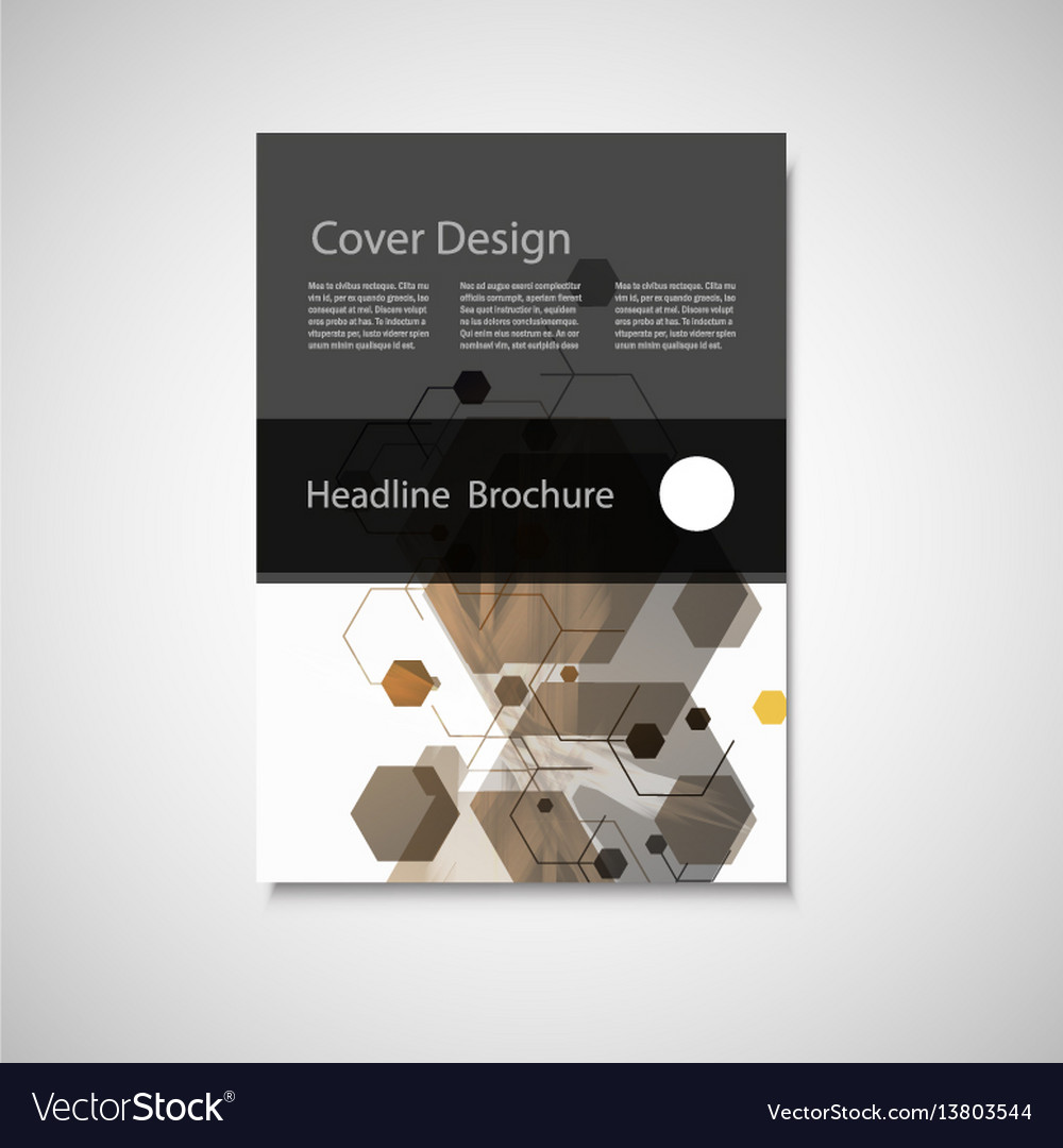 Annual report leaflet brochure flyer vector image