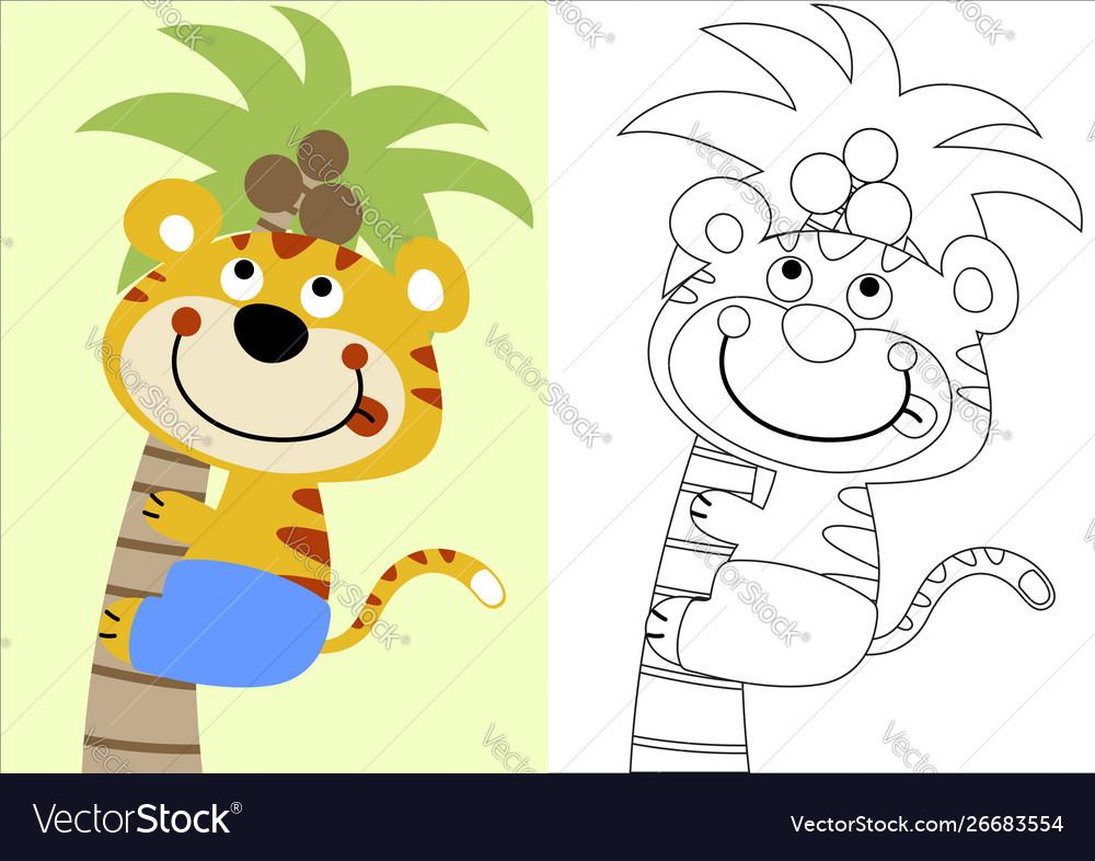 Cartoon tiger climb coconut tree coloring book
