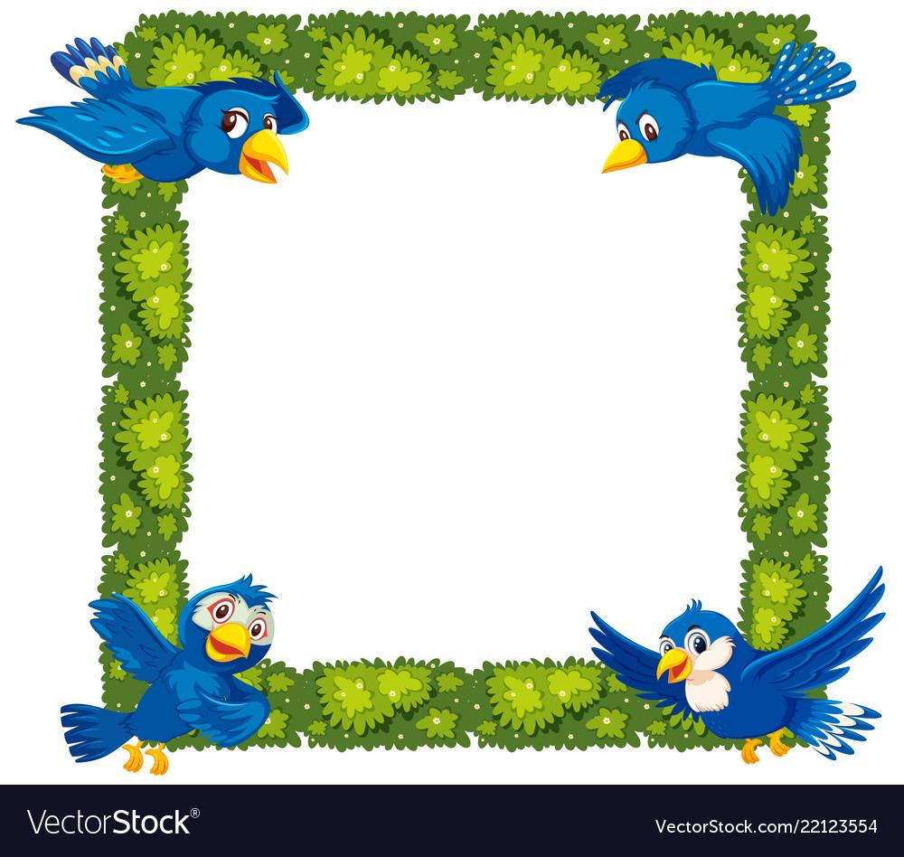 Birds border. Plant and bird
