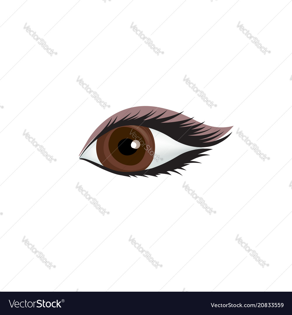 Womans eye icon sexy eye with perfectly shaped