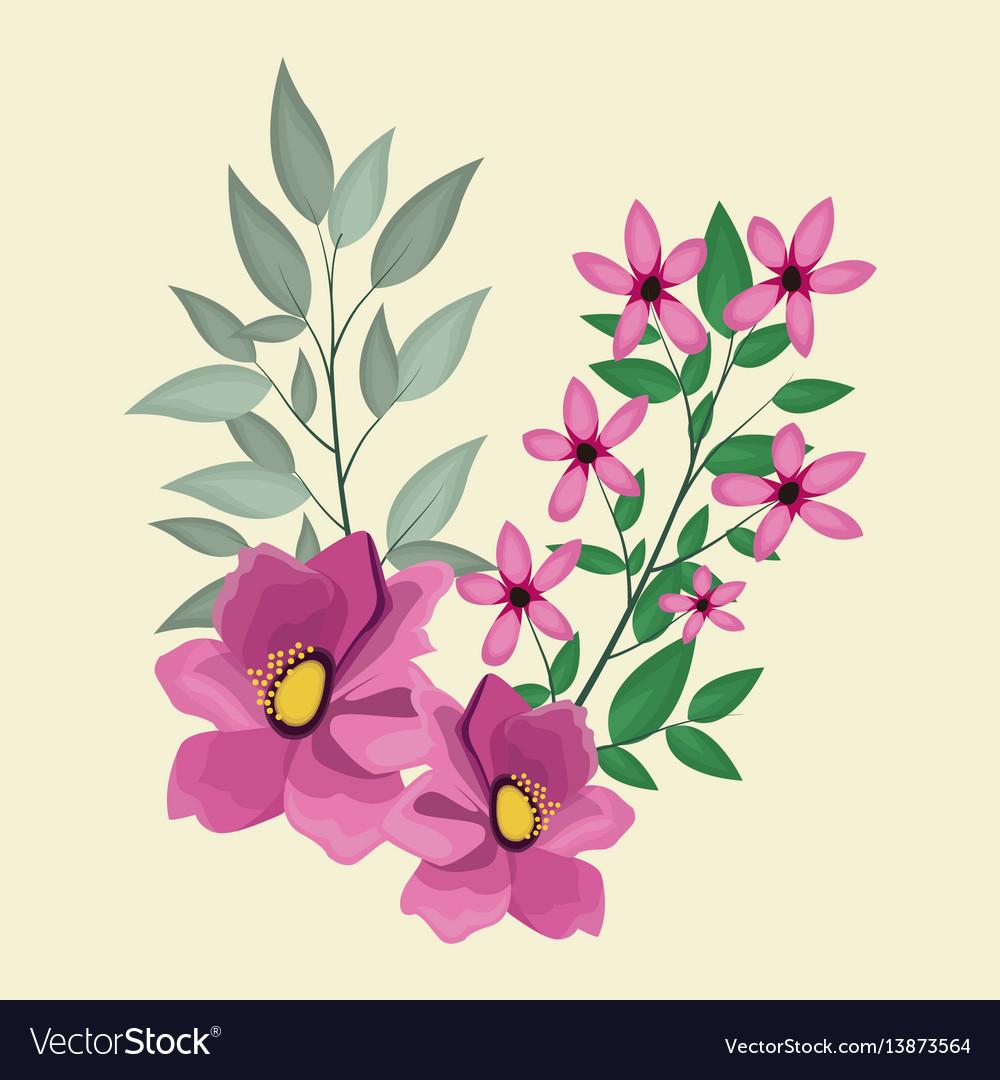 Anemone decoration leaves nature