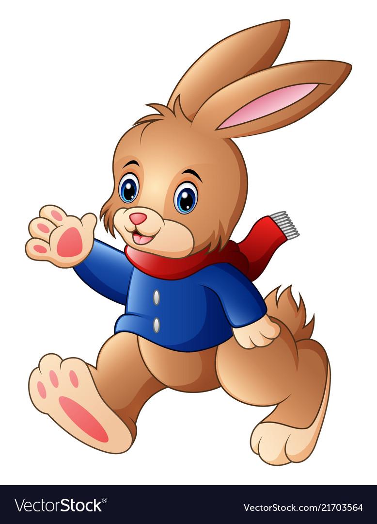 Happy rabbit cartoon isolated on white background