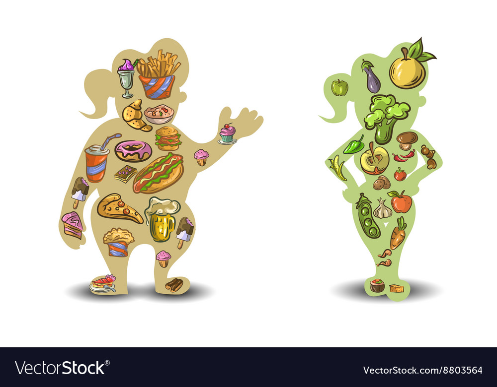 Silhouette of a fat and slim woman vector image