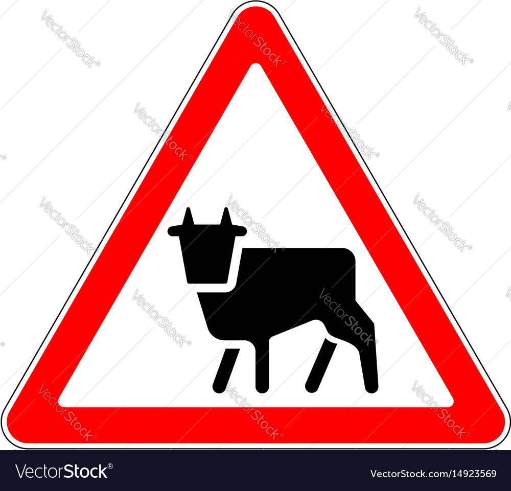 Road sign warning livestock movement on white
