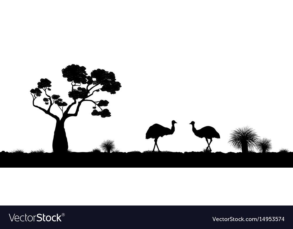 Australian landscape black silhouette of emu vector image
