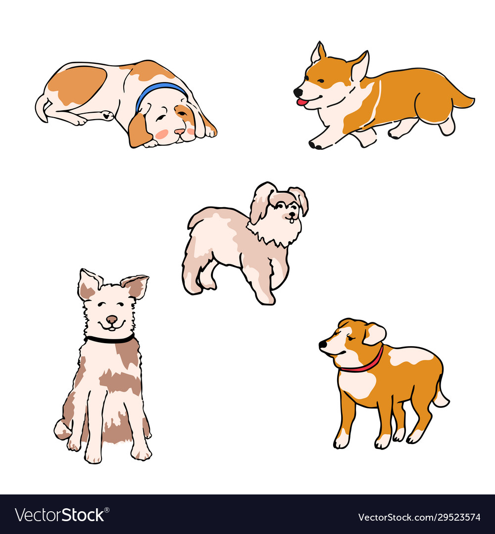 Set dogs different breeds