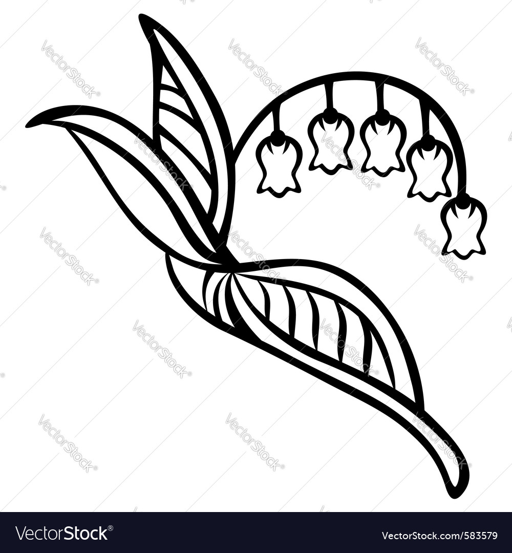 Lily Of The Valley Royalty Free Vector