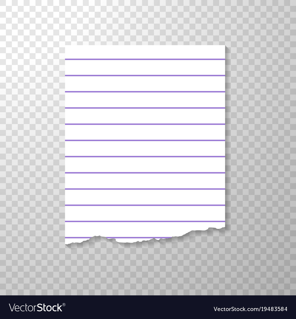 lined torn piece of paper from notebook clean or vector image
