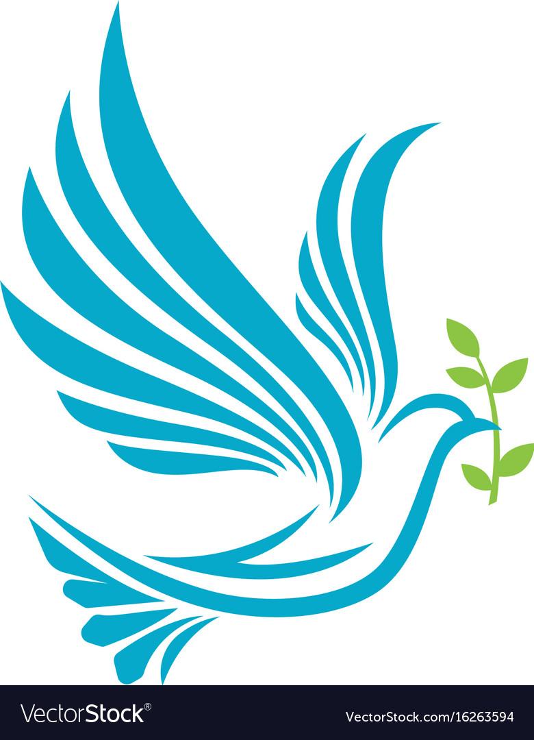 Bird wing dove logo template