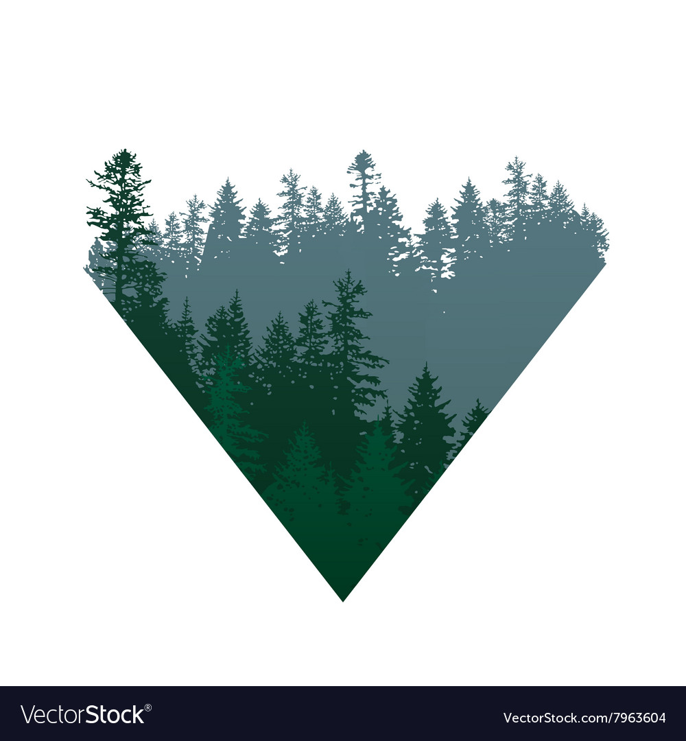 Coniferous forests sign