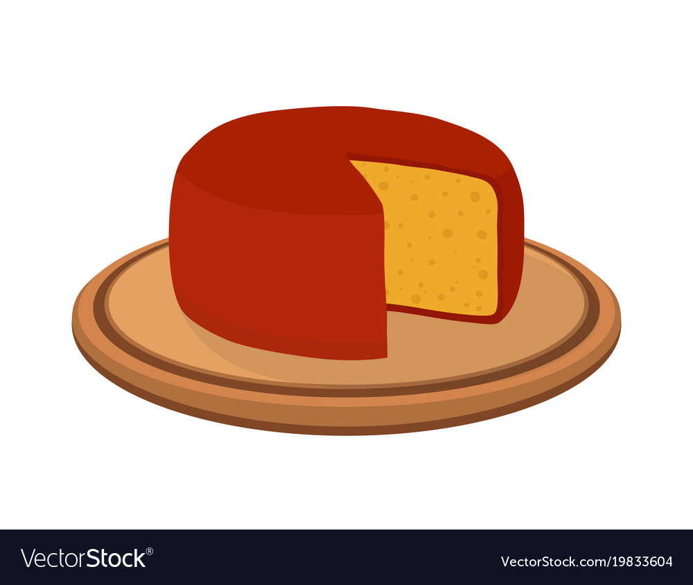 Gouda cheese on plate cartoon flat style