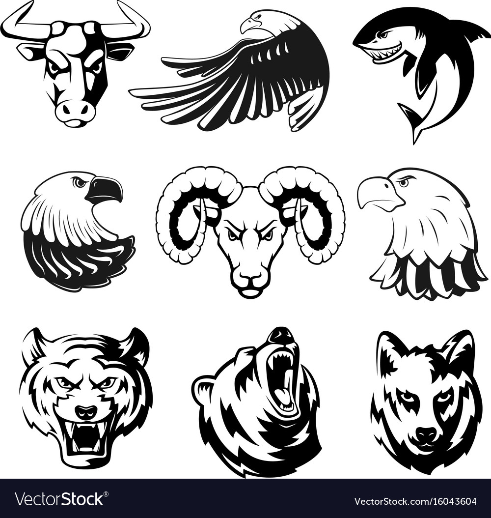 Heads of animals for logo or sport symbols