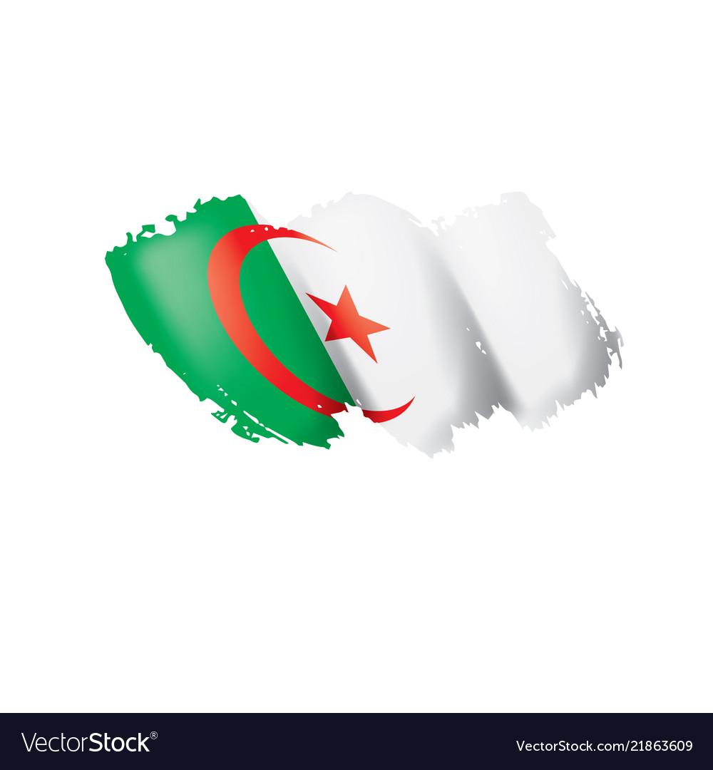Algeria flag on a white
