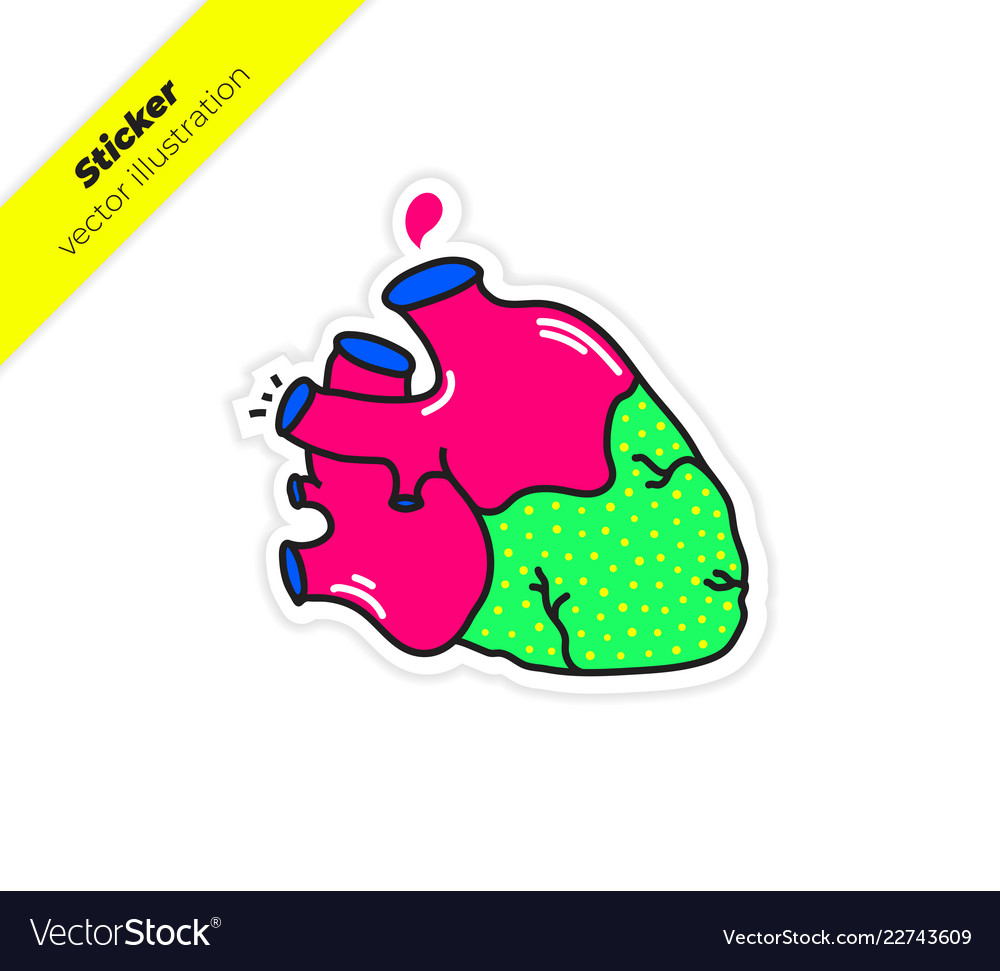 Real Anatomy Heart With Aorta Drop Blood Sticker Vector Image