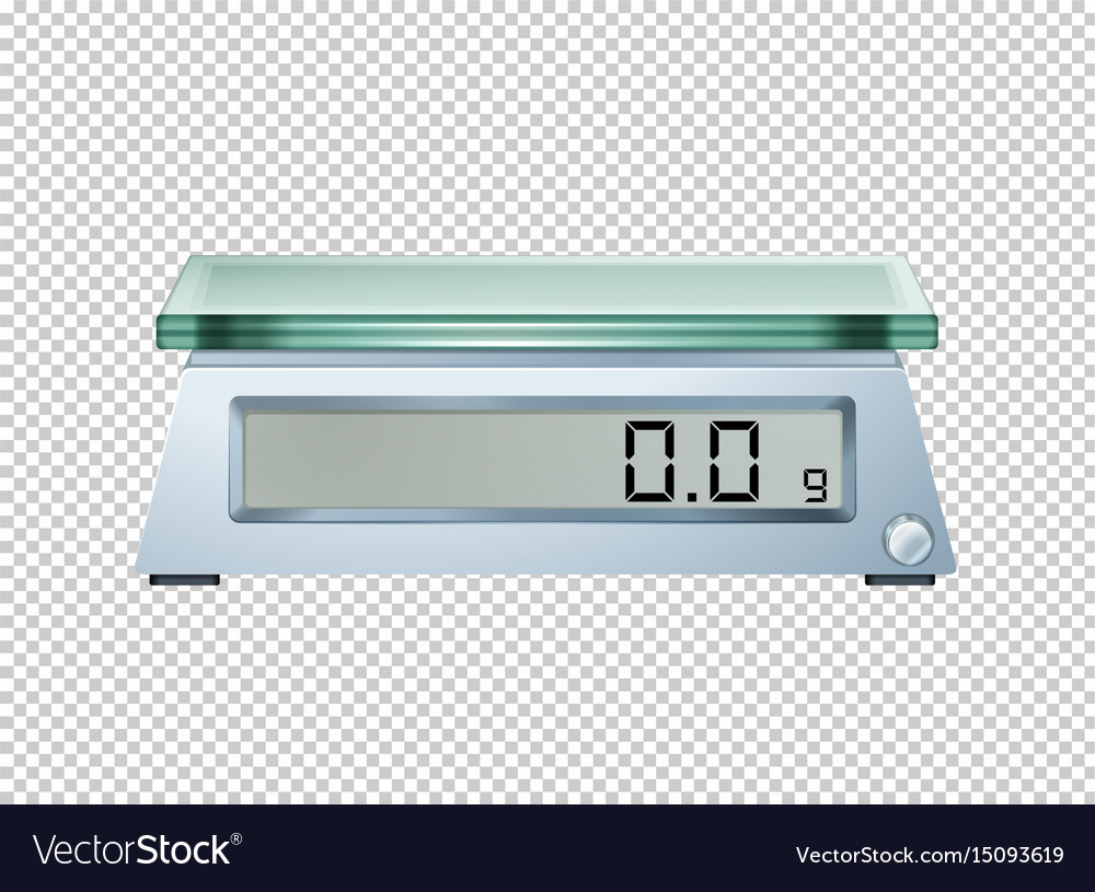 Digital scale on transparent background vector image