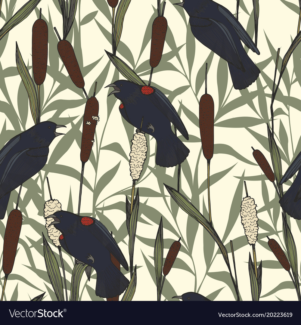 Seamless pattern with reeds and birds hand drawing vector image