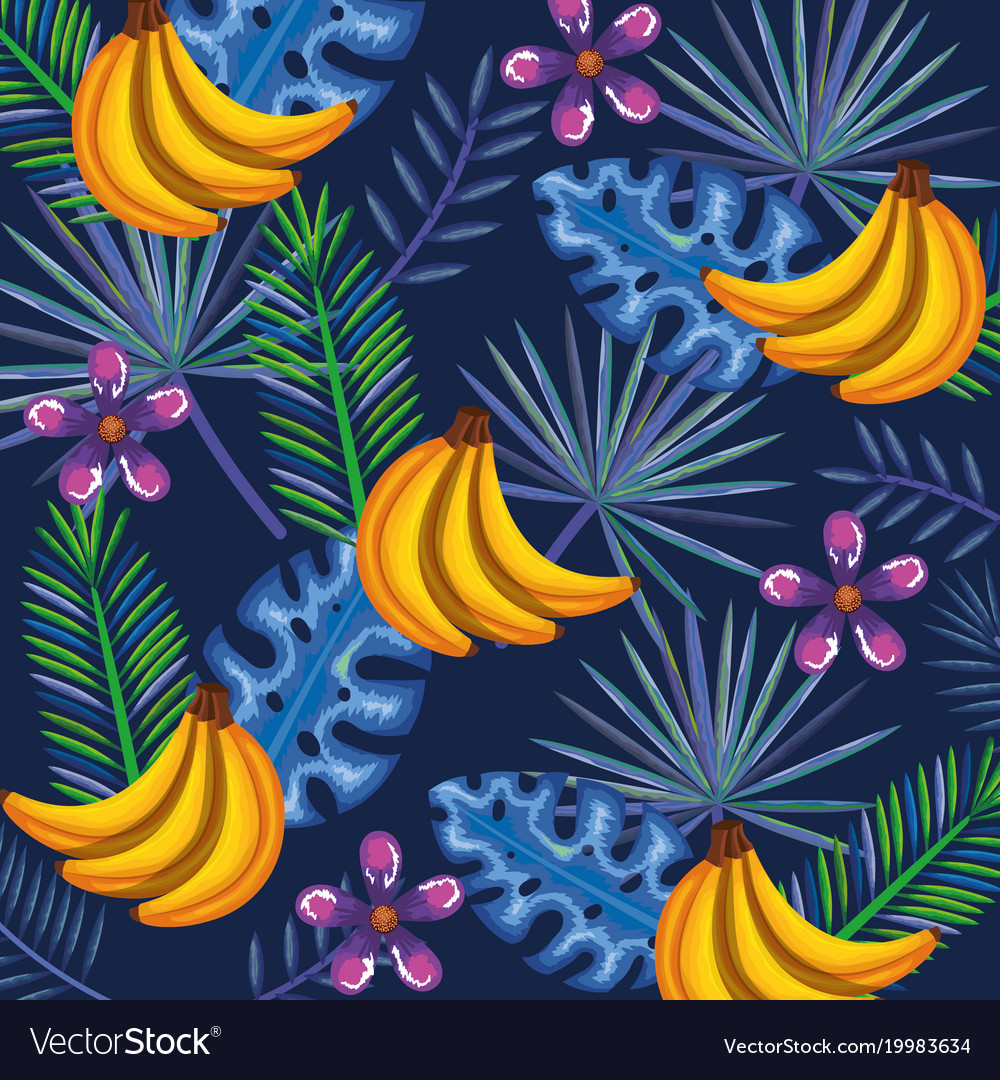 Tropical garden with banana cluster vector image