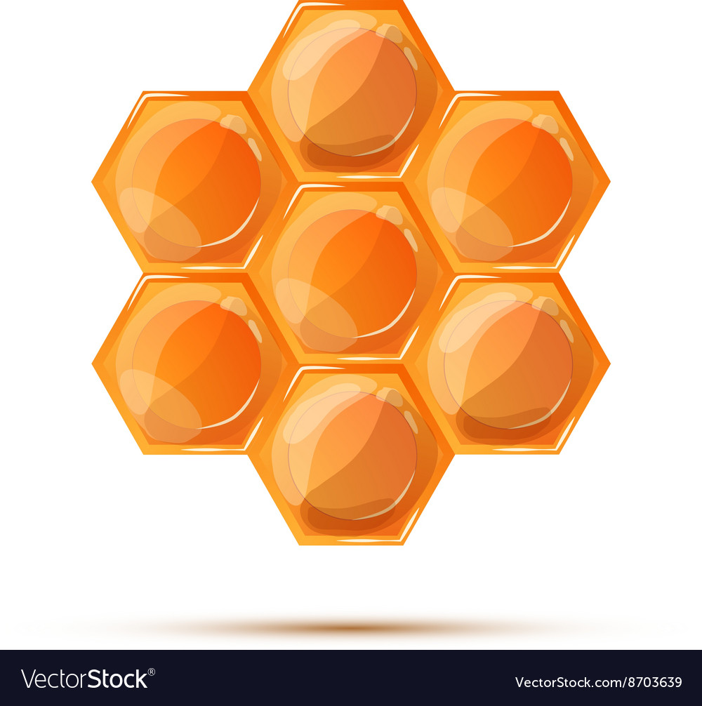 Bright glossy honeycomb with shadow on white