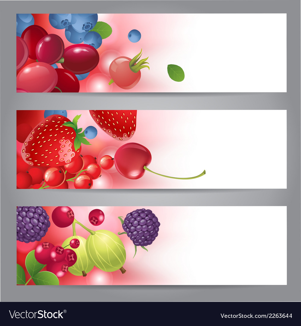 Banners with berries vector image