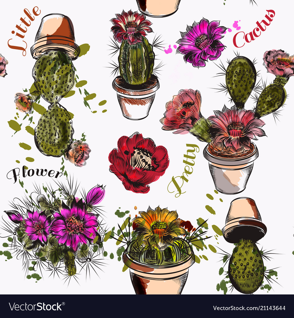Wallpaper pattern with hand drawn cactuses