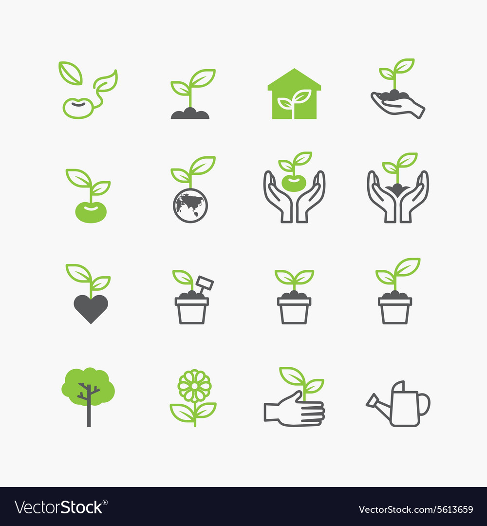 Plant and sprout growing icons flat line