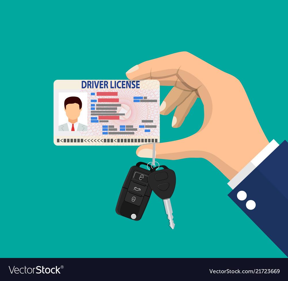 Car driver man license identification card