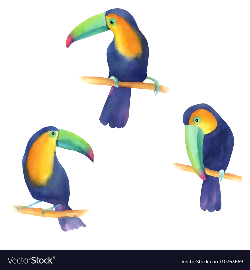 Watercolor with toucans