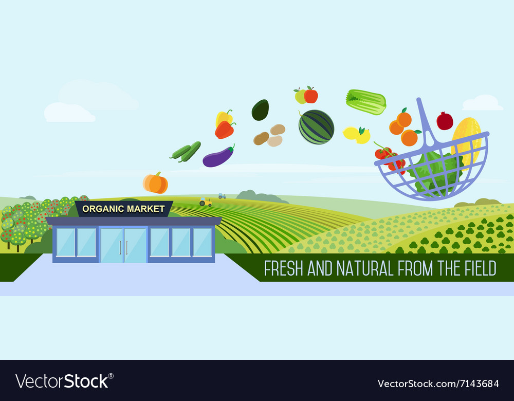Organic food delivery vector image