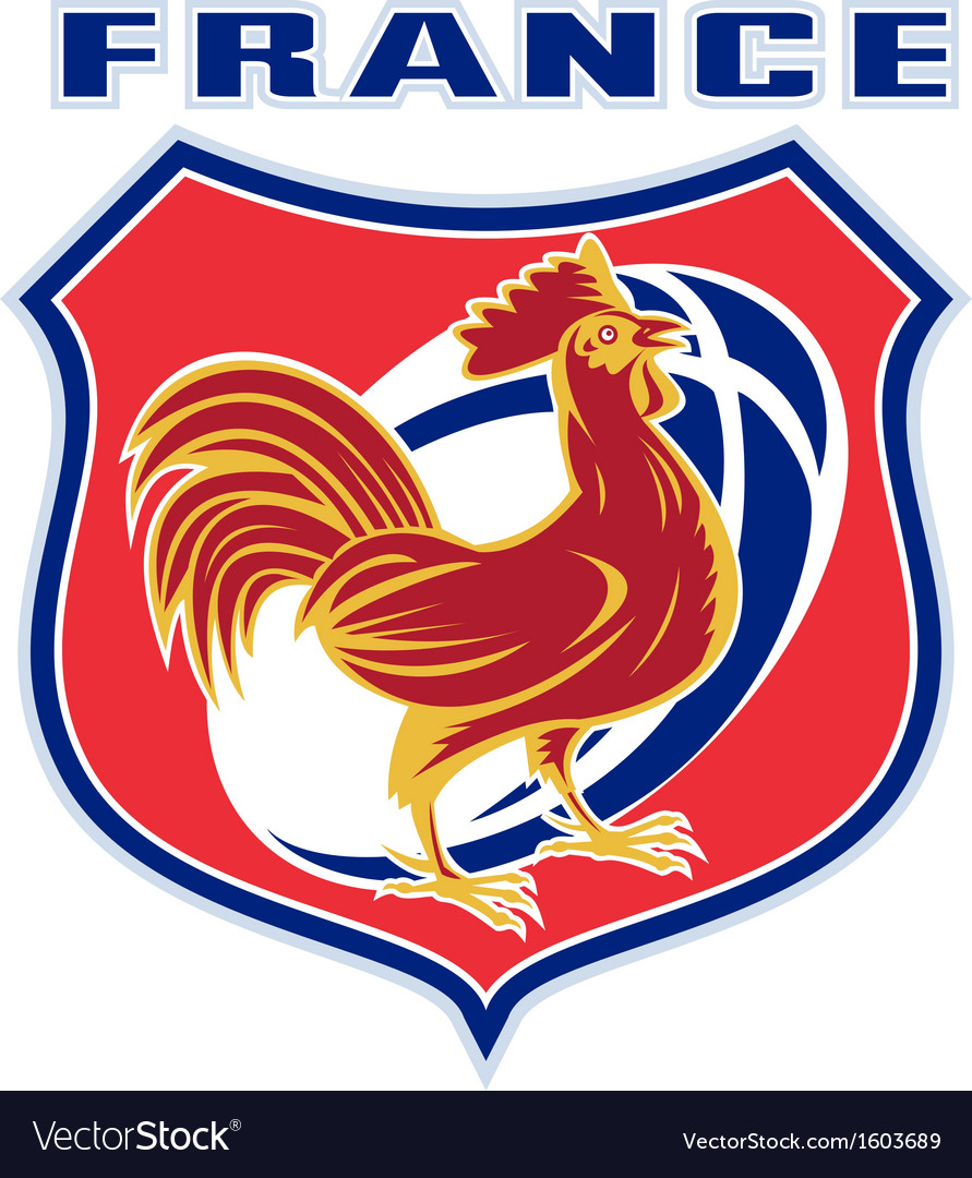 Rugby rooster mascot france vector image