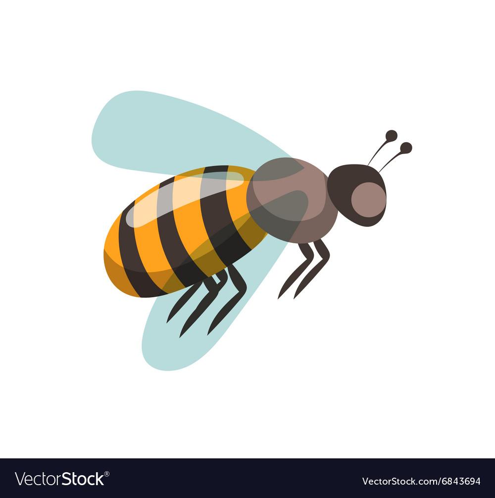 Bee cartoon style