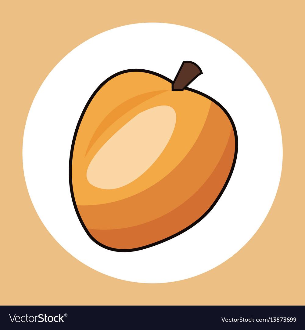 Apricot healthy fresh image