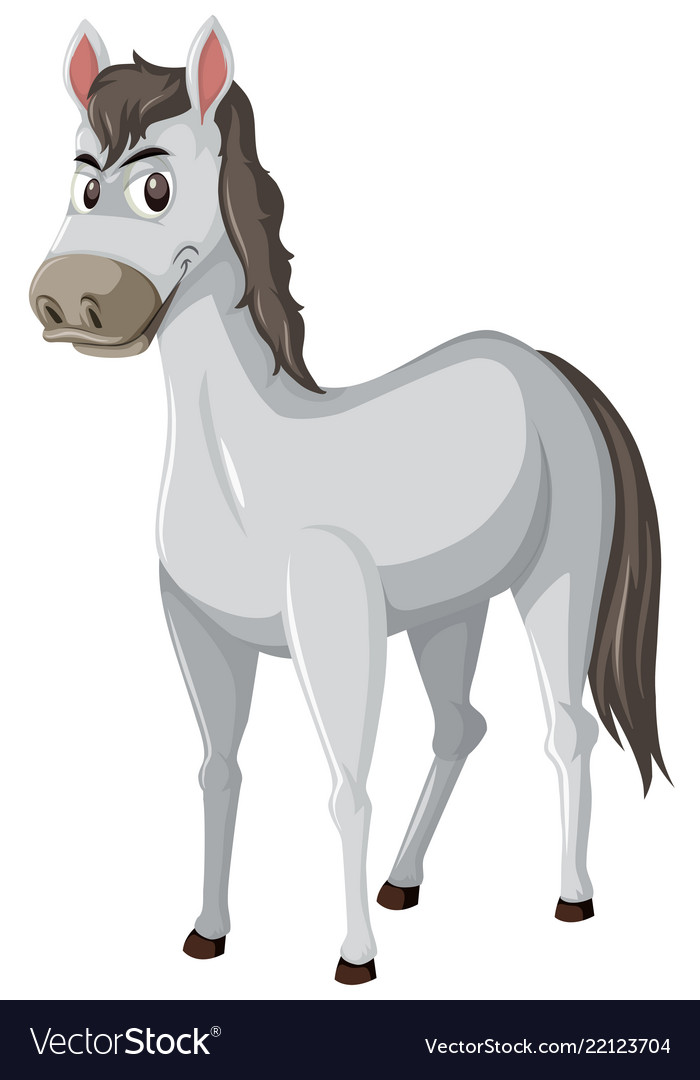 Grey horse white background Royalty Free Vector Image