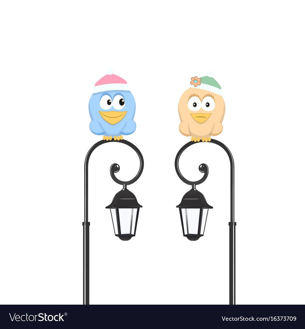 Birds sitting on the street lantern