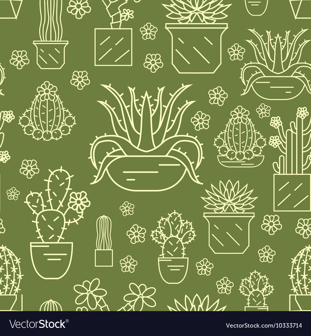 Cactuses and succulents seamless pattern Thin line