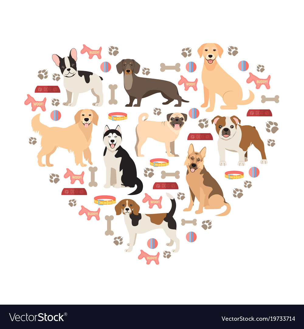 Dog Lovers Flat Style Collection Cartoon Dogs Vector Image