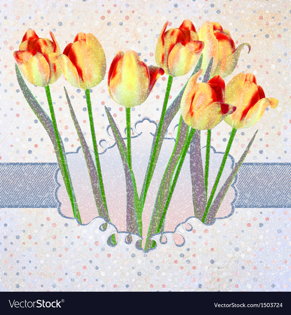 Vintage tulips card with polka dot EPS 10 vector image