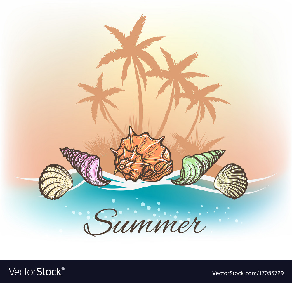 Sea shells and palm trees banner