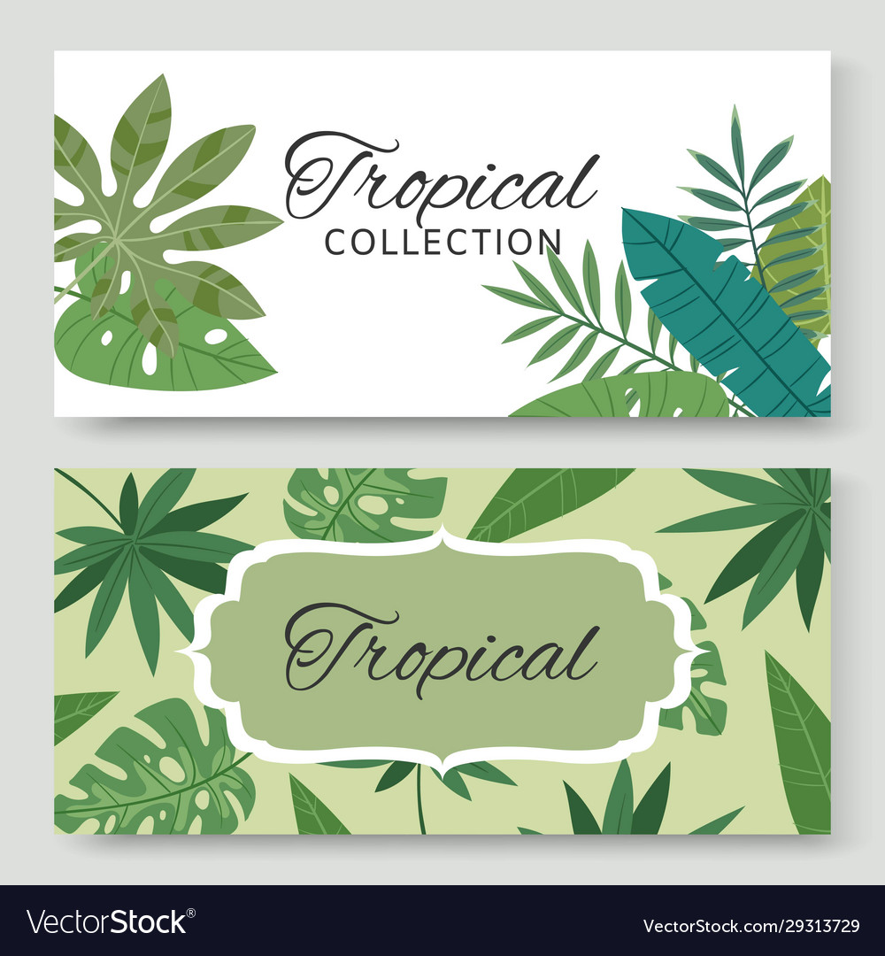 Vintage banners set with tropical green leaves and