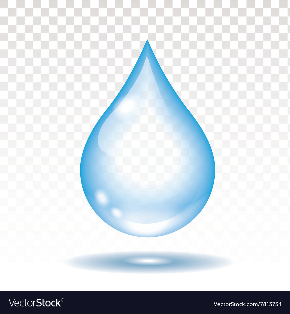 Realistic water drop isolated vector image