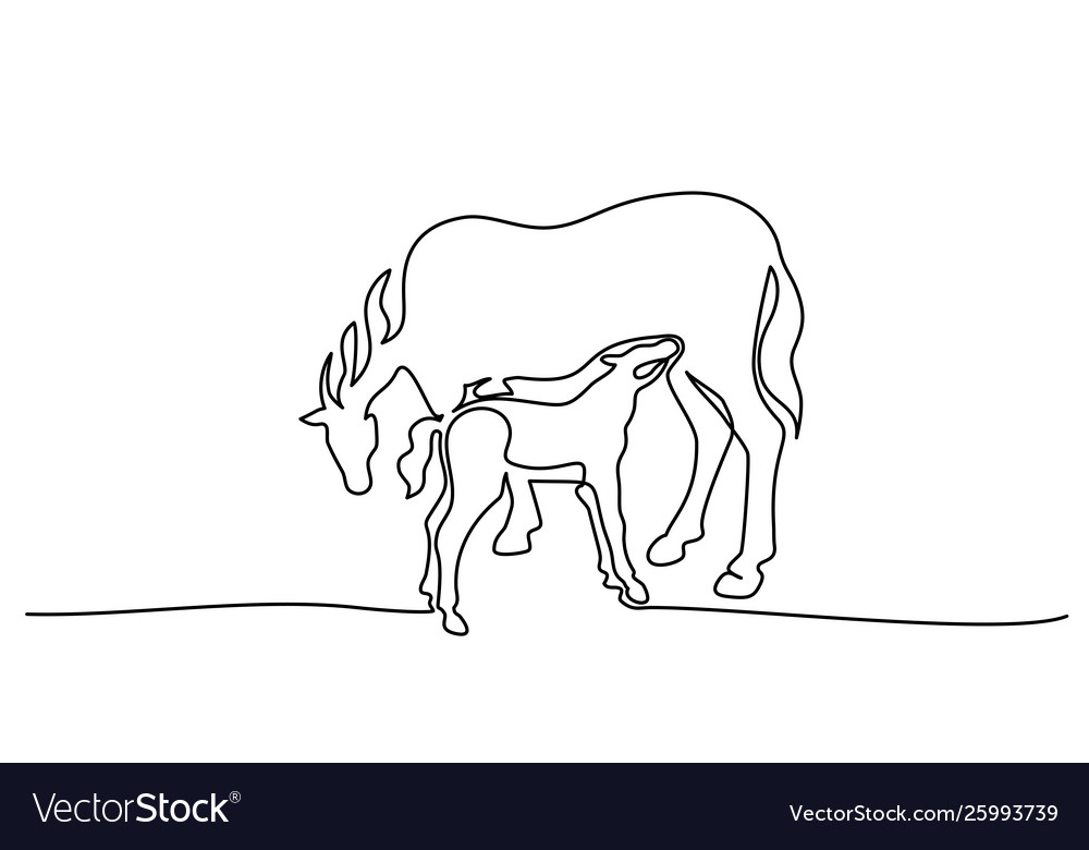 One line drawing horse feeds small foal