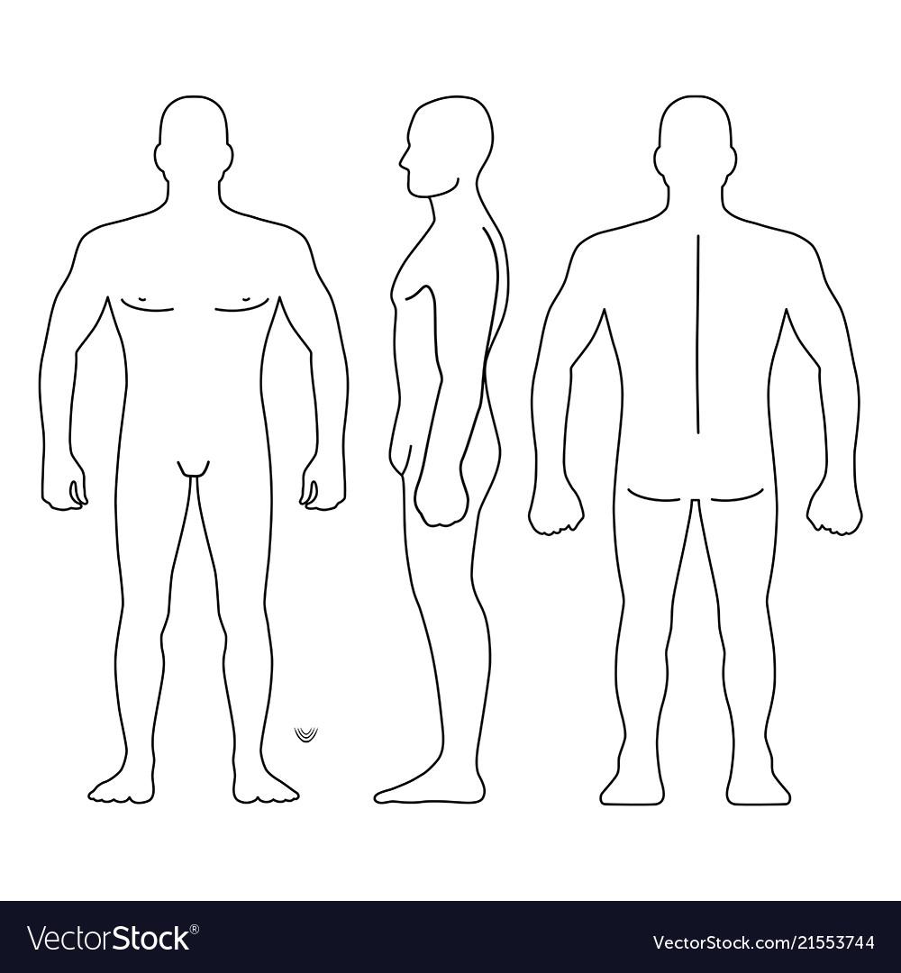 Fashion Man Body Full Length Bald Template Figure Vector Image