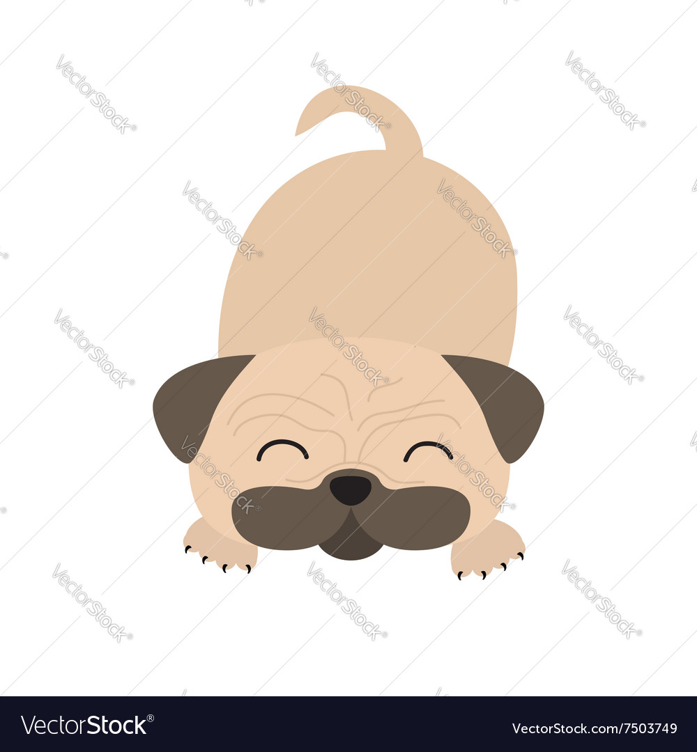 Pug dog mops Cute cartoon character Flat design vector image