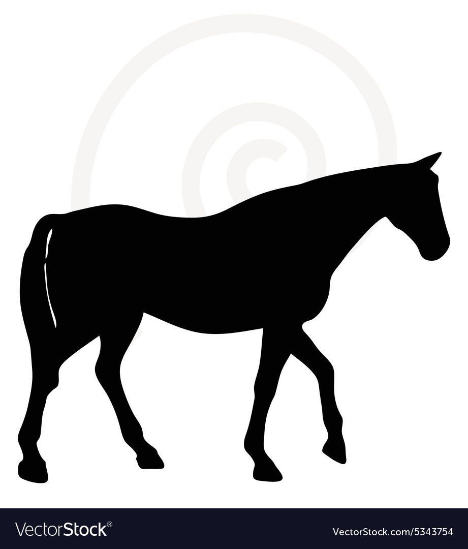 Horse Silhouette In Walking Head Up Pose Vector Image