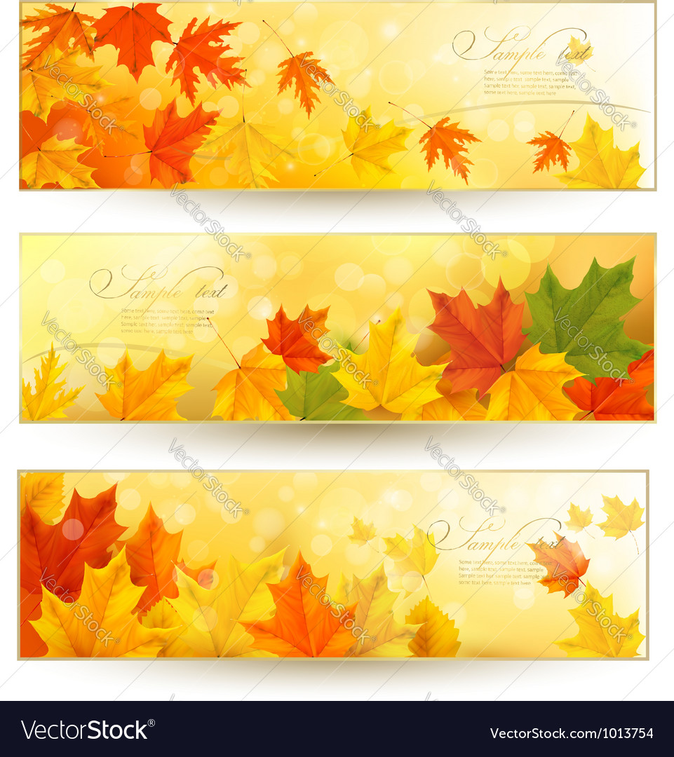 Three autumn banners with colorful leaves in vector image