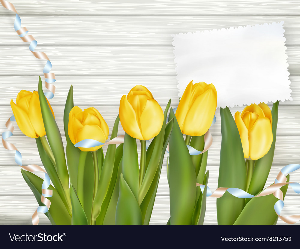 Paper card with tulips EPS 10
