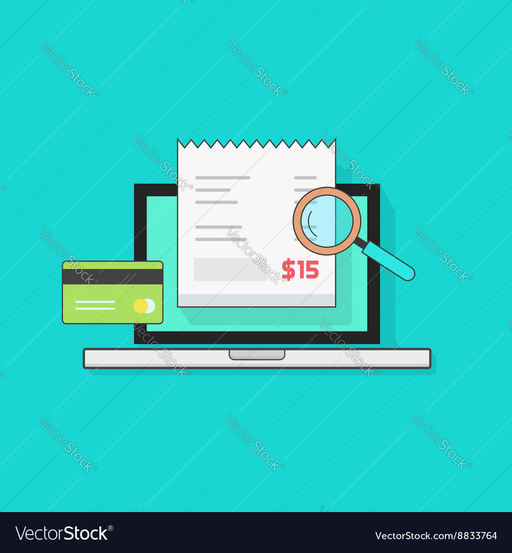 Laptop computer receipt credit card magnifier vector image
