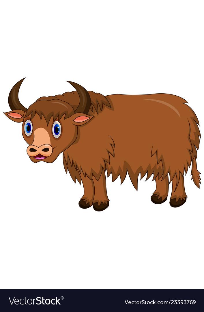 Cute yak cartoon Royalty Free Vector Image - VectorStock