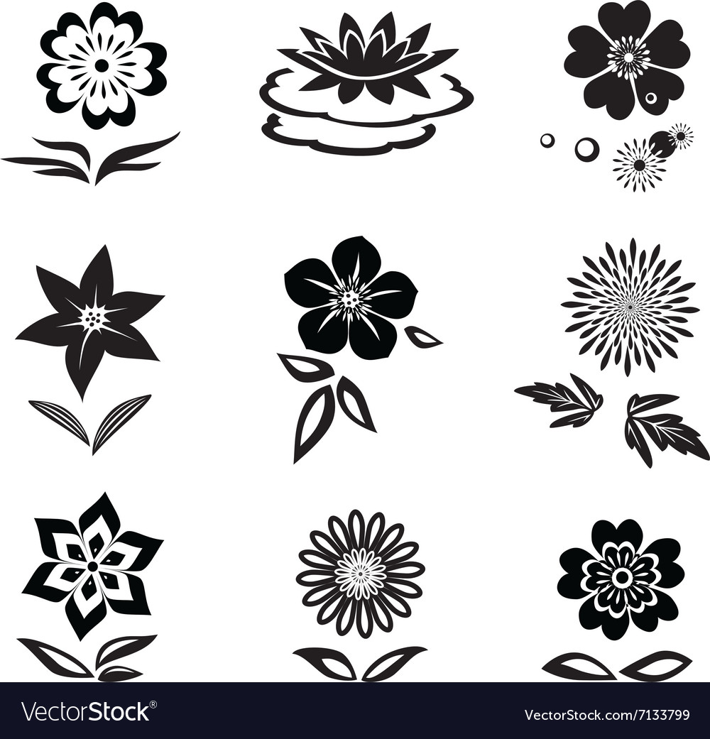 Flower Set Chamomile Lily Orchid Water Lily Vector Image